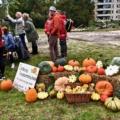 Eerste oogstfestival groot succes!