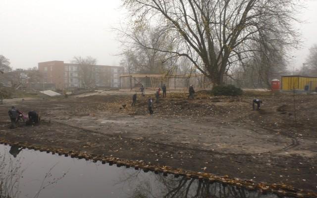 Vrijwilligers planten olmenbos in Doepark de Hagen